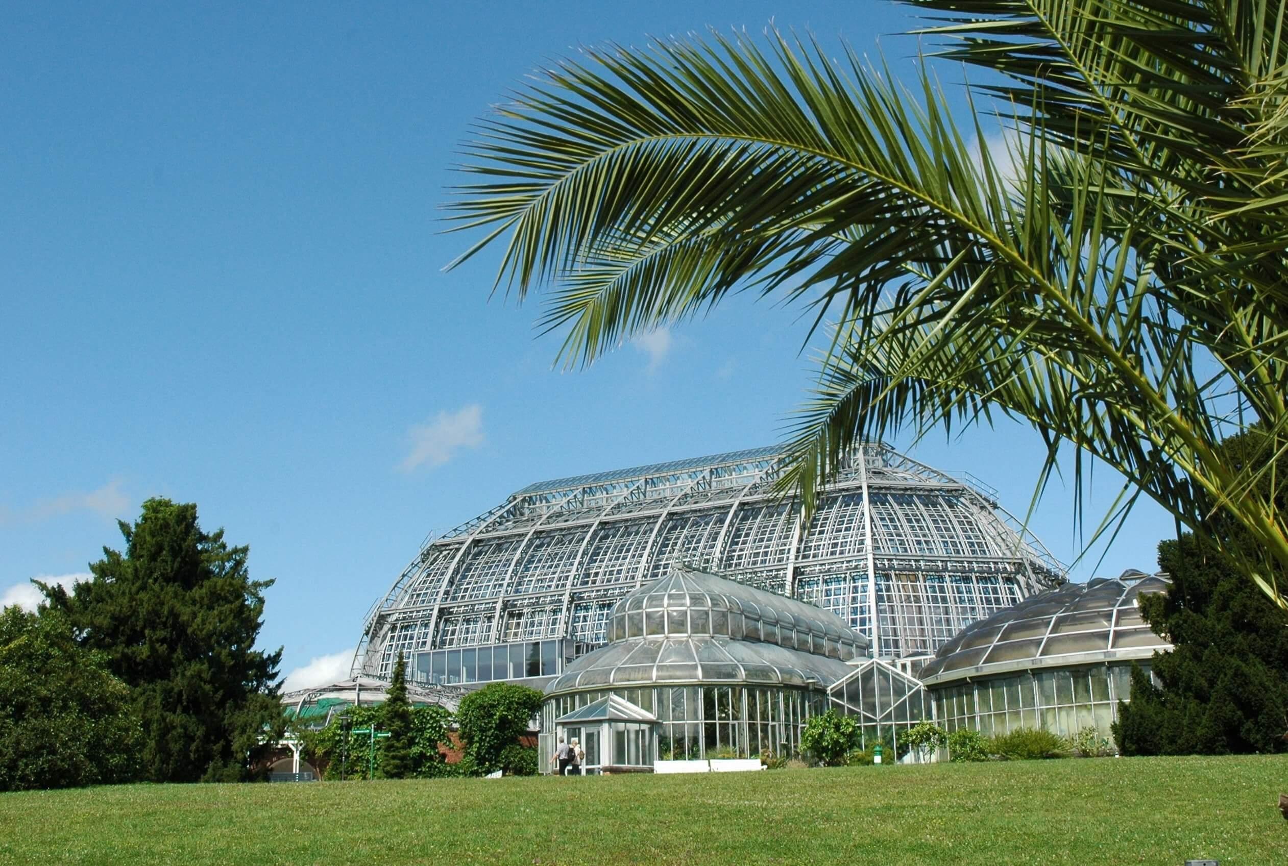 Botanischer Garten - Großes Tropenhaus