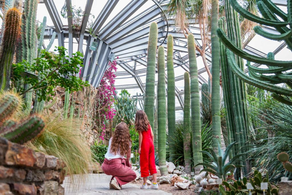 Zukunftskonzept des Botanischen Gartens in Berlin