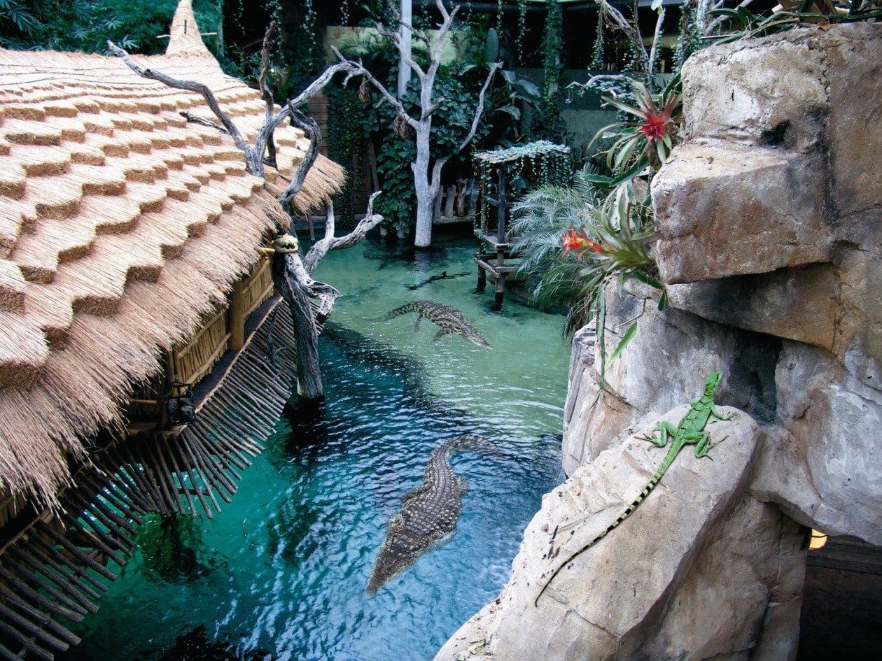 Tropen Aquarium Hagenbeck - Krokodil See Tropen Aquarium © Tierpark Hagenbeck