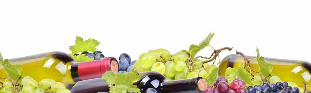 Genussreiche Weinmesse Berlin
